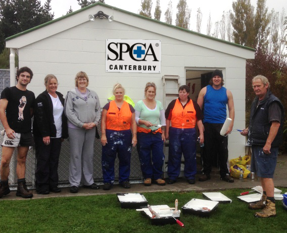 Christchurch Staff Help Out at SPCA